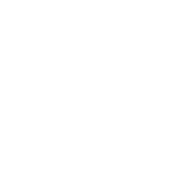 CARF Accredited Seal of Excellence